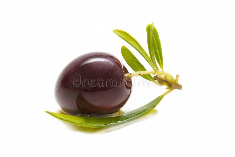 Macro de azeitonas frescas imagem de stock