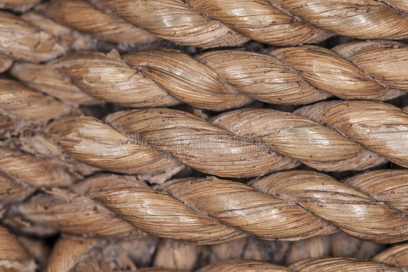 Macro de bambu da corda imagem de stock royalty free