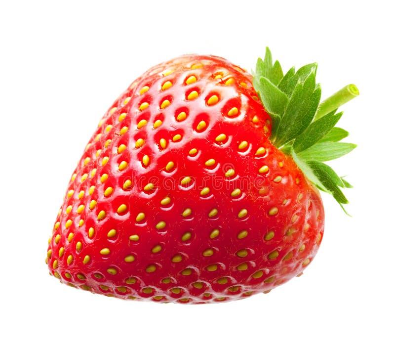 Macro de fraise images libres de droits