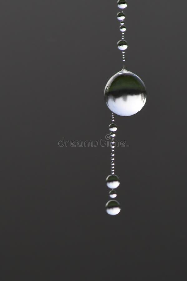 Macro de gotas de orvalho em uma costa da Web de aranha imagem de stock royalty free
