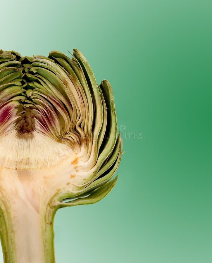 Download Macro de la alcachofa imagen de archivo. Imagen de vehículos - 182939