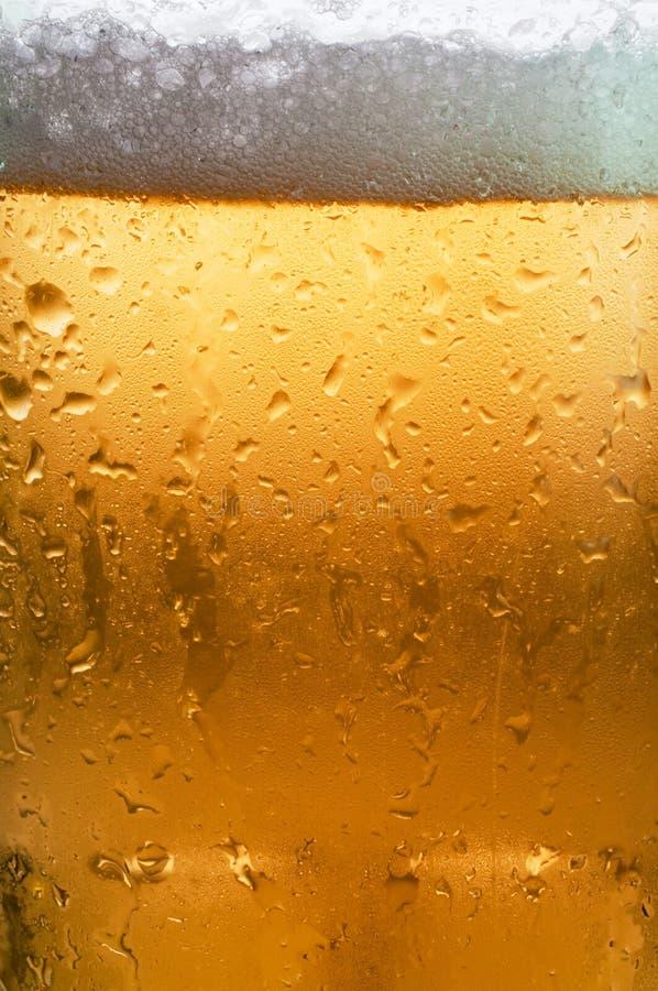Macro de la cerveza fotos de archivo libres de regalías