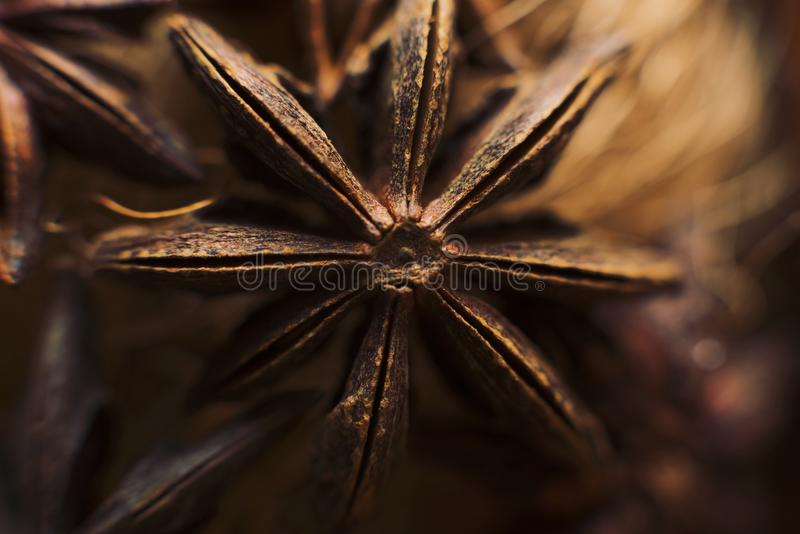 Macro de la estrella del anís Fondo y texturas de la comida Ingrediente aromático imágenes de archivo libres de regalías