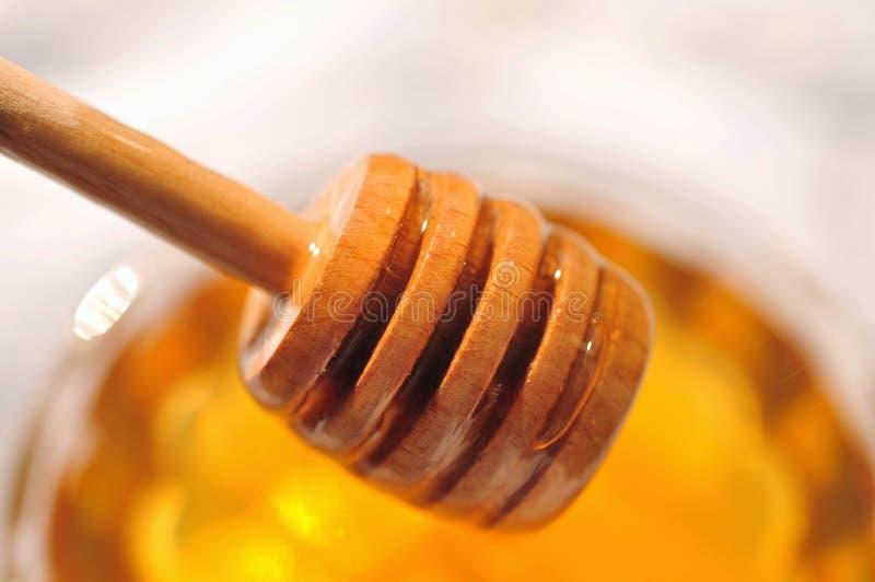 Macro de miel avec le plongeur en bois de miel dans le pot en verre photos stock