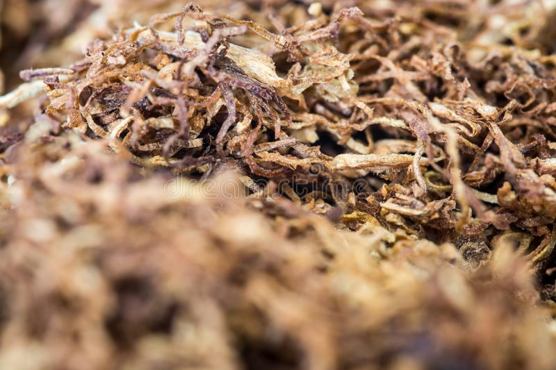 Macro de roulement de tabac images stock