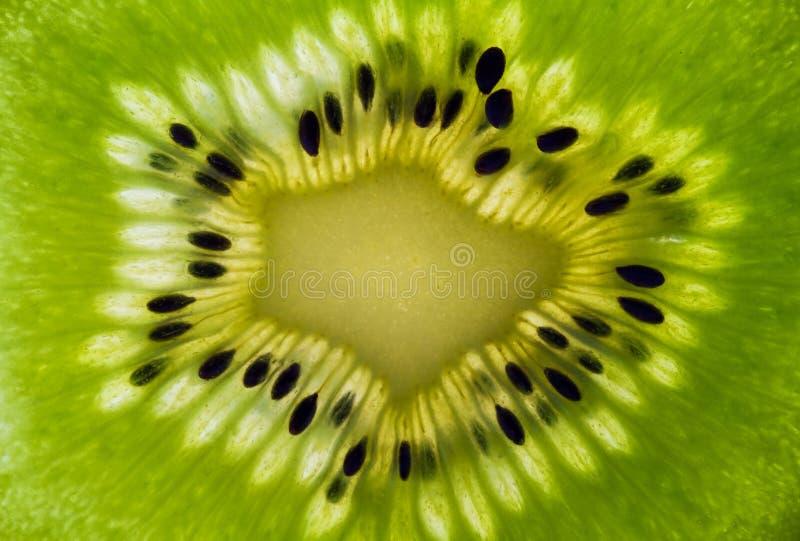 Macro de um Kiwifruit foto de stock