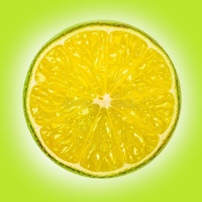 Macro de una rebanada de limón en un fondo del verde lima fotos de archivo