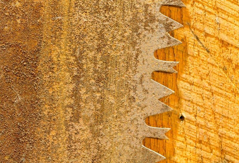 Macro dei denti di grande lama per sega circolare arrugginita fotografia stock