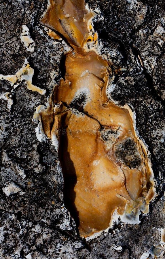 Macro del detalle de la roca imagen de archivo