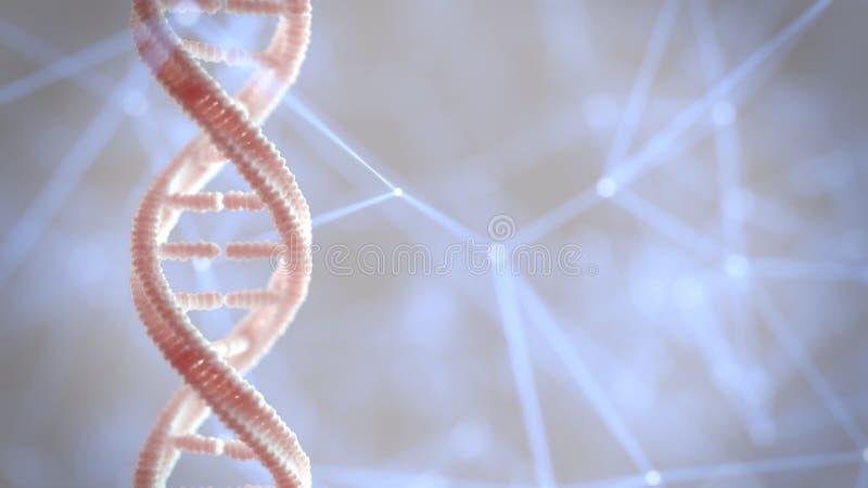 Macro del materiale genetico della struttura del DNA immagini stock libere da diritti