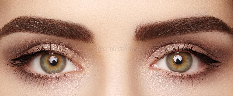 Macro del primer del ojo femenino hermoso con las cejas perfectas de la forma Piel limpia, maquillaje del naturel de la moda Buen imagen de archivo