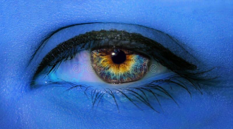 Macro del primer del ojo de la mujer con las pestañas largas y maquillaje azul profesional en luz de neón azul fotos de archivo libres de regalías