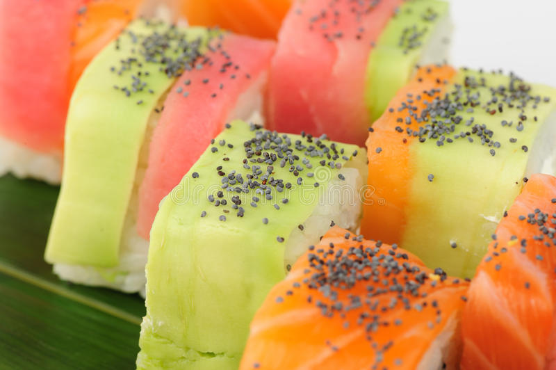 Macro del sushi del arco iris imagen de archivo