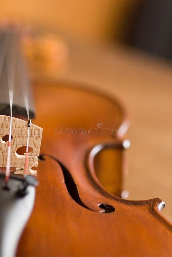 Macro del violín foto de archivo