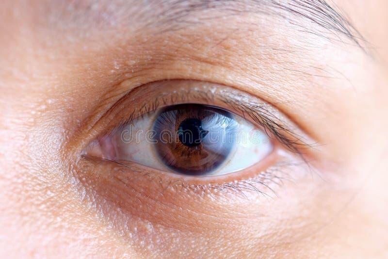 Macro dell'occhio della donna dell'Asia, la visione del futuro e concetto sano di vita osservi preciso e diritto al concetto dell immagine stock