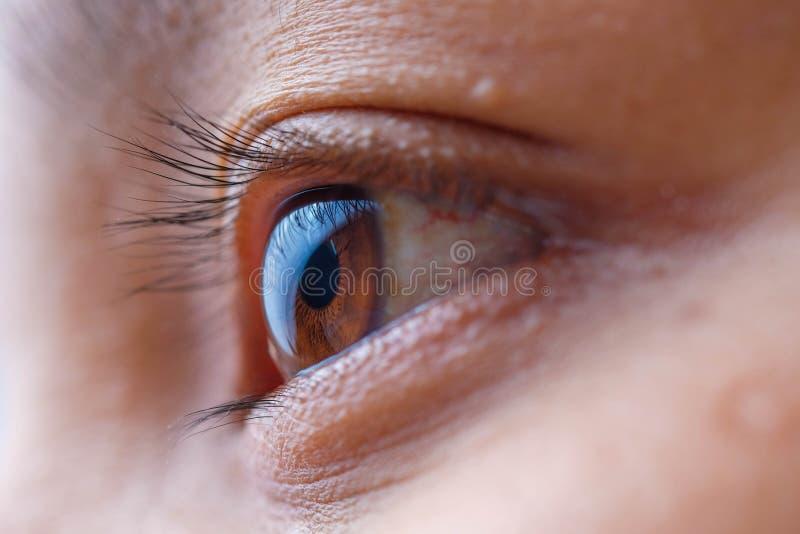 Macro dell'occhio della donna dell'Asia, la visione del futuro e concetto sano di vita osservi preciso e diritto al concetto dell immagini stock