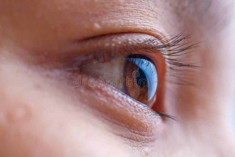 Macro dell'occhio della donna, la visione del futuro e concetto sano di vita osservi preciso e diritto al concetto dell'obiettivo fotografie stock libere da diritti