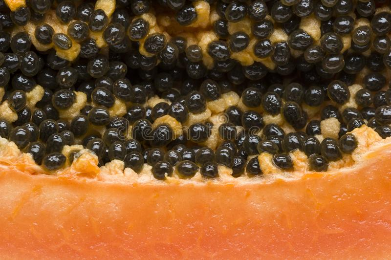 Macro della frutta della papaia immagine stock