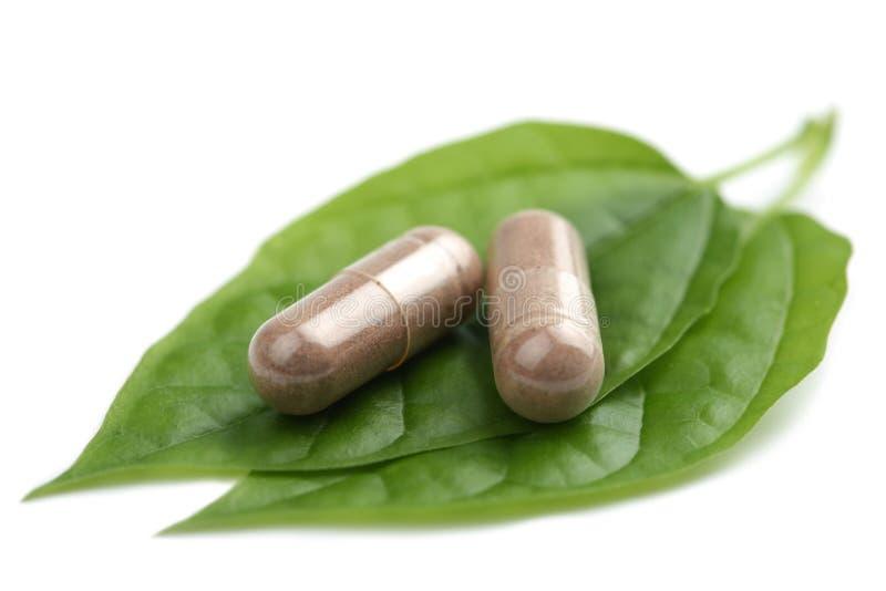 Macro delle pillole di prescrizione sopra il foglio verde immagine stock