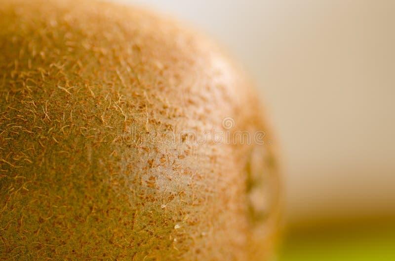 Macro dicht omhoog harig gezond sappig kiwifruit royalty-vrije stock afbeelding
