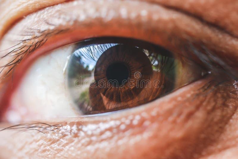Macro do olho da mulher de ?sia, a vis?o do futuro e conceito saud?vel da vida veja preciso e reto ao conceito do alvo imagem de stock