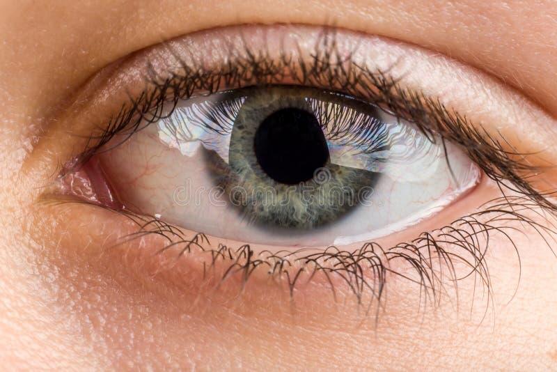 Macro do olho do adolescente fotografia de stock