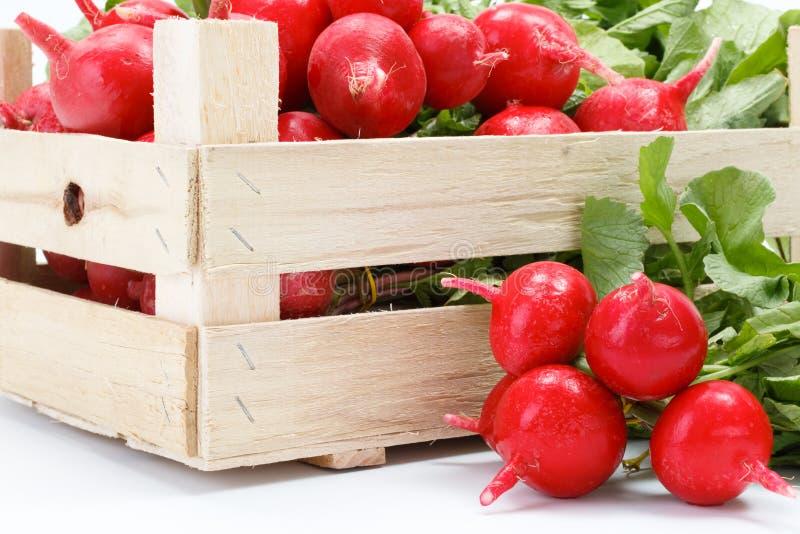 Macro do rabanete vermelho fresco na caixa fotografia de stock