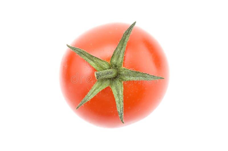 Macro do tomate fotos de stock