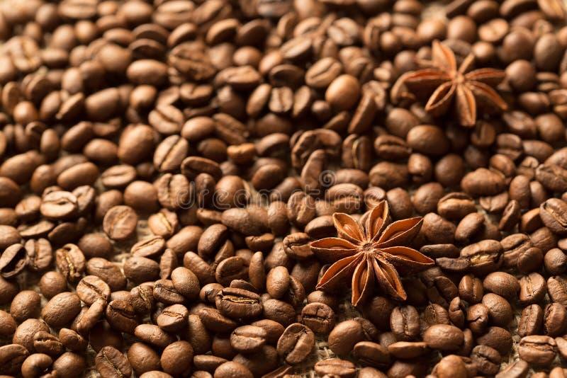 Macro dos ingredientes de Brown: estrela do anis, varas de canela e feijões de café Vista superior imagens de stock