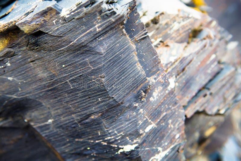 Macro. Element rock, texture of stone. Caucasus Mountains. stock images
