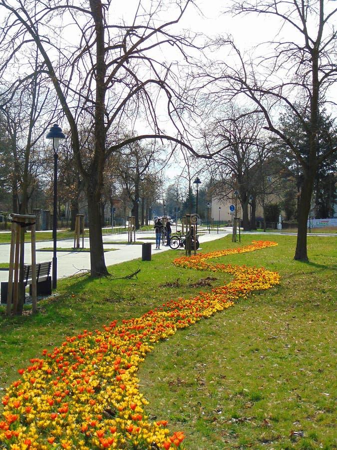 Macro foto con i precedenti di infrastruttura urbana della capitale tedesca di Berlino in Hoppegarten immagine stock