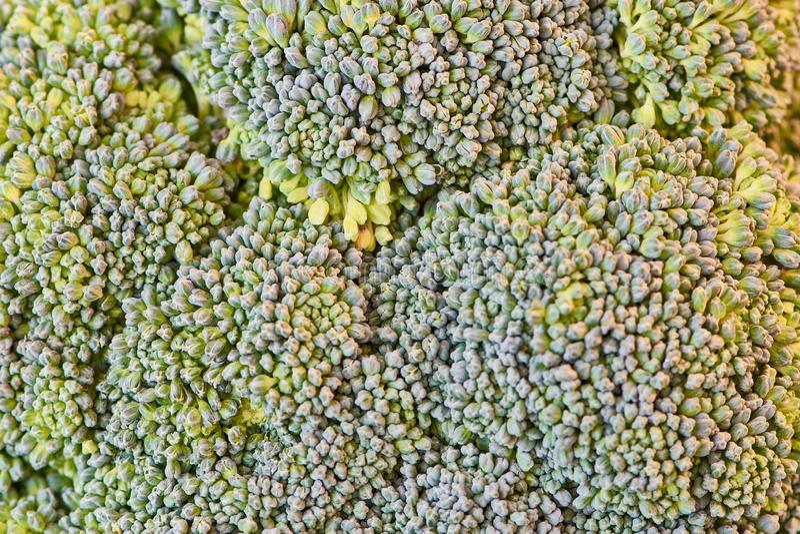 Macro foto dei broccoli come fondo dell'immagine immagini stock