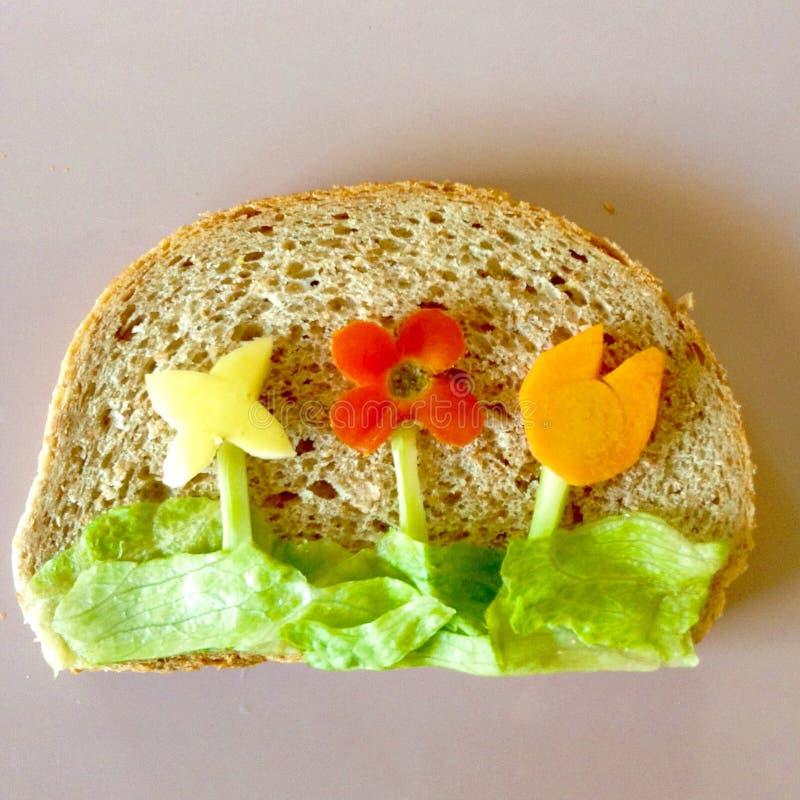 Macro foto dell'alimento art fotografia stock libera da diritti