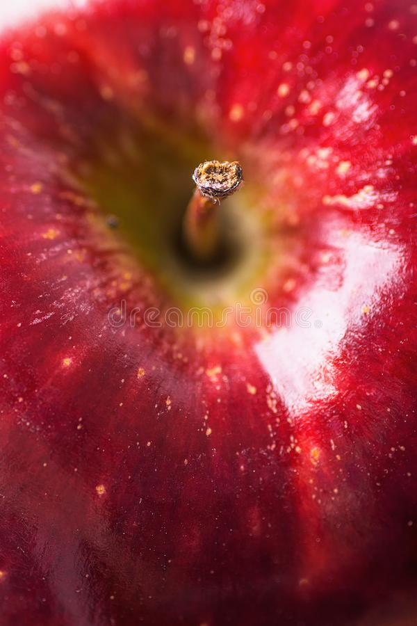 Macro fotografia di Apple rosso organico maturo con le imperfezioni di struttura Fuoco selettivo sulla punta del gambo Priorità b fotografie stock