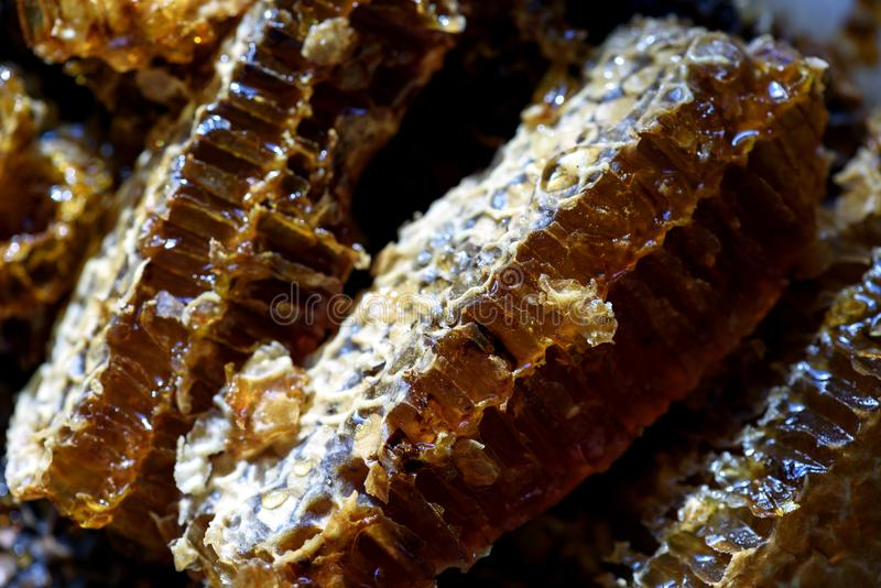 Macro of Fresh Natural Honeycomb royalty free stock photos