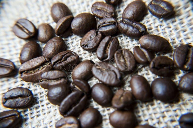 Macro grains de café sur la toile de jute image stock