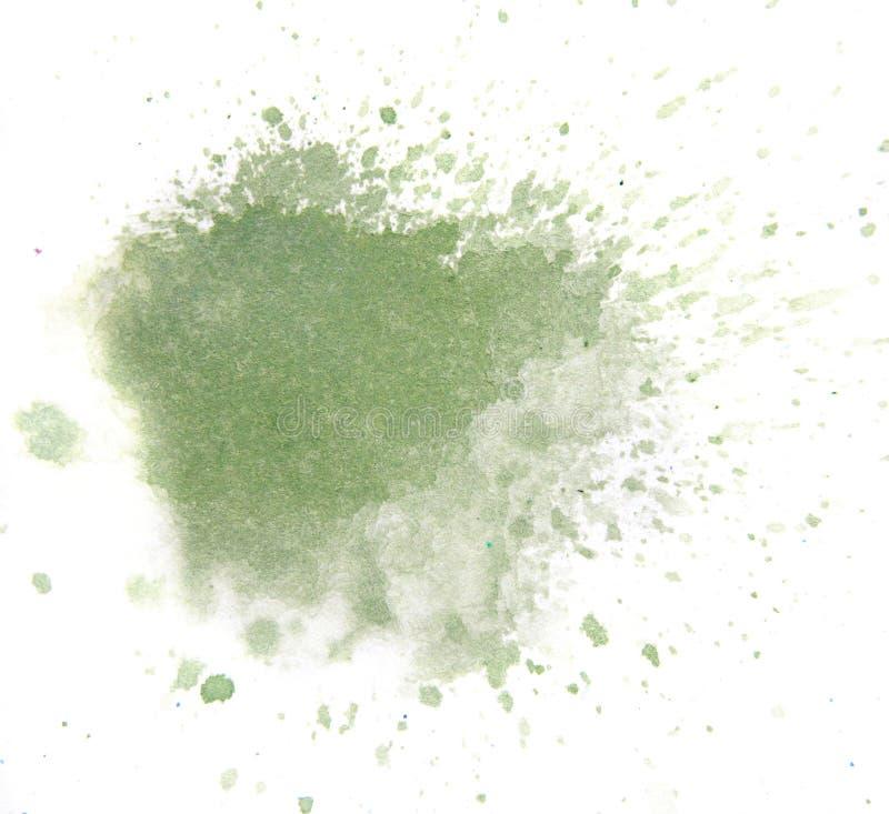 Macro groene die waterverfplons, op witte achtergrond wordt geïsoleerd vector illustratie