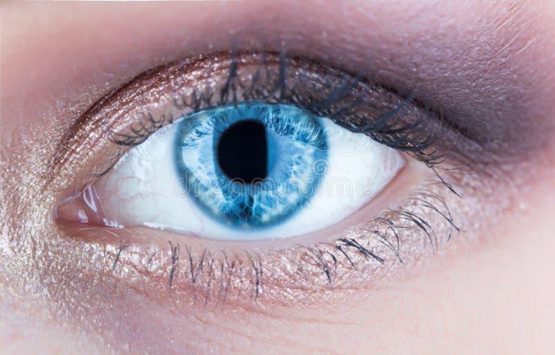 Macro of human eye. Closeup of blue human eye. Human eyes close-up detail. Female eyes with long eyelashes close up royalty free stock photo