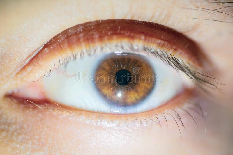 Macro image with the brown eye of a man stock image