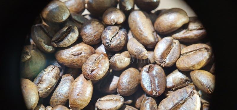 macro image de vue de texture de grains de café image stock
