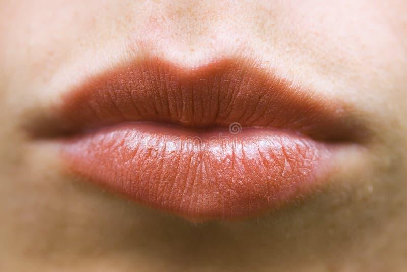 Macro lips royalty free stock photography