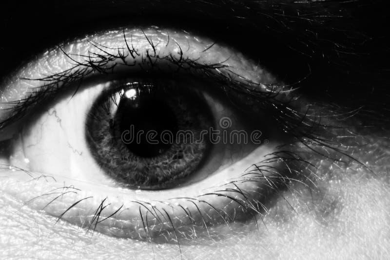Macro masculin noir et blanc d'oeil photos libres de droits