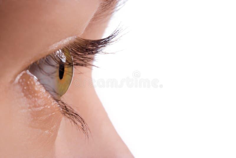 Macro menselijk oog stock afbeeldingen
