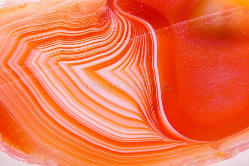 Macro mineral orange agate in crystals on white background royalty free stock photos