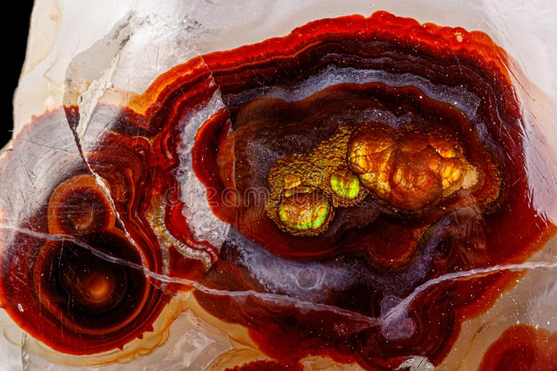 Macro mineral stone fire agate on a black background. Close up stock images