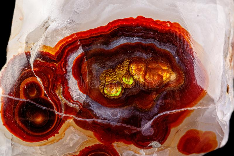 Macro mineral stone fire agate on a black background. Close up stock photos