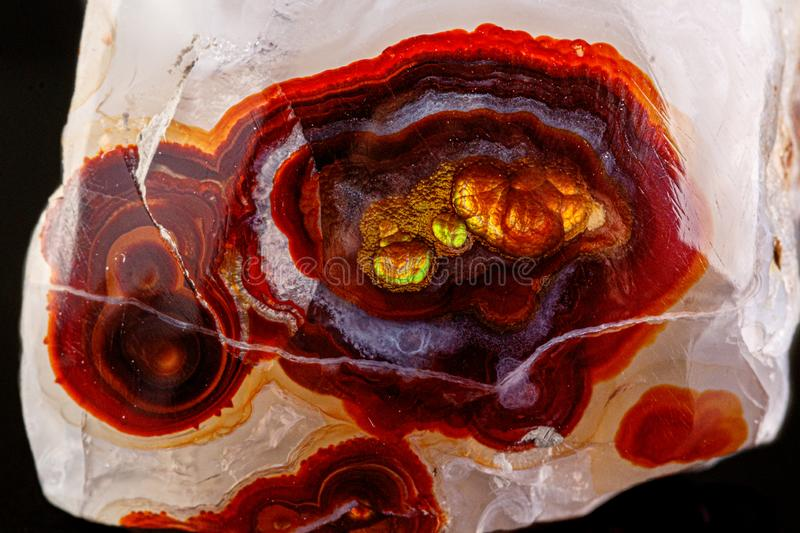 Macro mineral stone fire agate on a black background. Close up royalty free stock images
