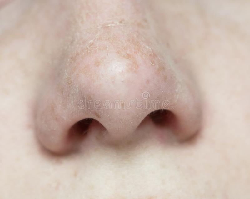 Macro of nose stock photo