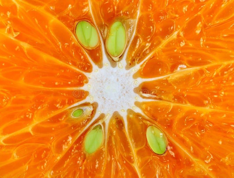 Macro Orange Details Royalty Free Stock Image