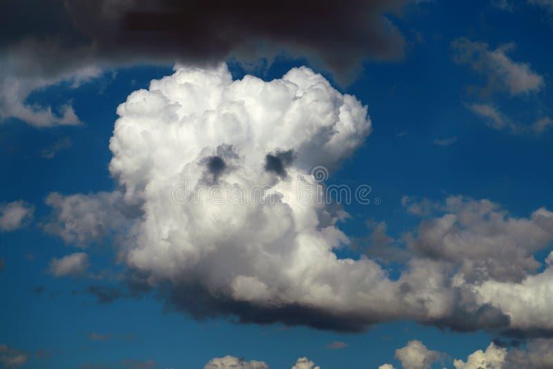Macro photo d'un cumulus photographie stock